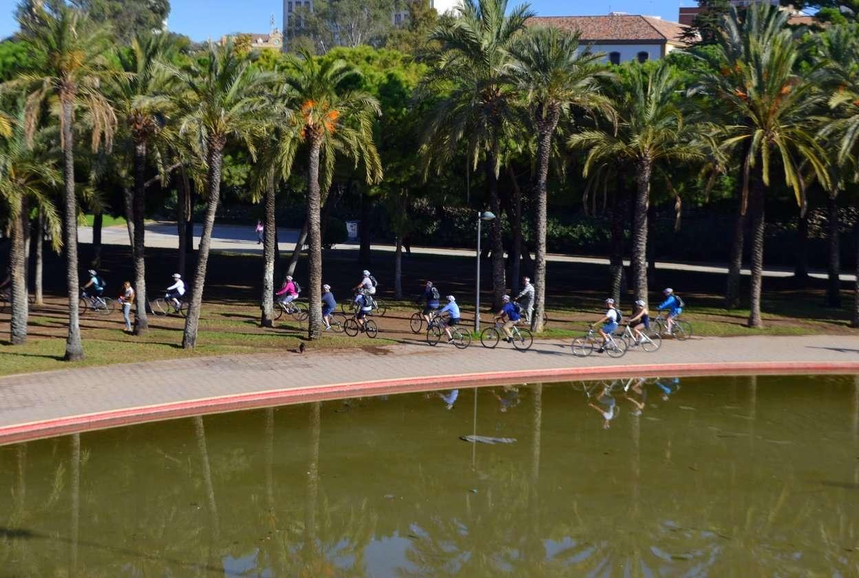 Bicis en Valencia